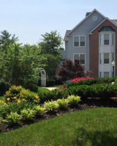 Reasons to Hire a Landscaping Contractor this Spring