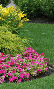 prepare your landscape for spring