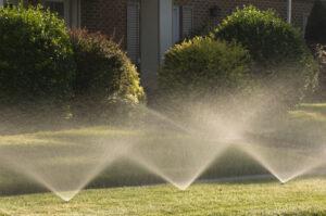 effective watering