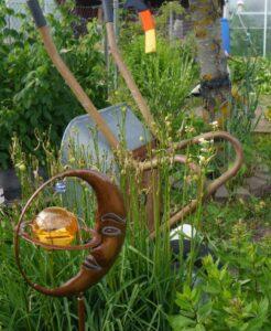 landscaping, design