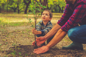 Tree planting has an immensely positive impact on our environment. Today, plant a tree for the Earth!