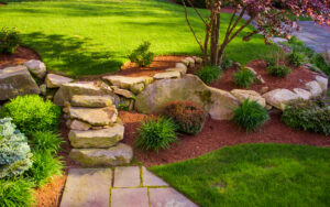 5 Ideas for Your New Backyard Landscape