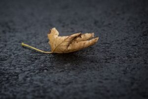 Tips for Caring for Asphalt Surfaces in the Fall