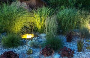 Hardscape Features to Add to Your Landscape