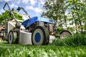 Taking Care of Your Landscape This Spring