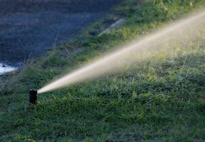 Guide to Keeping Your Lawn Hydrated