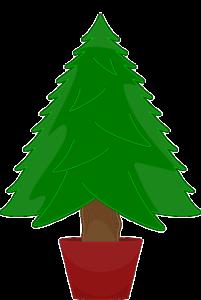 Helpful Tree Planting Tips