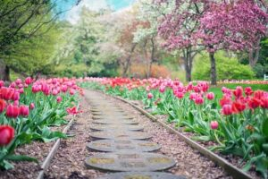 How to Create a Gorgeous Landscape for Spring 2020