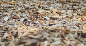 Mulch is essential for keeping your plants and trees healthy, especially in the summer heat!