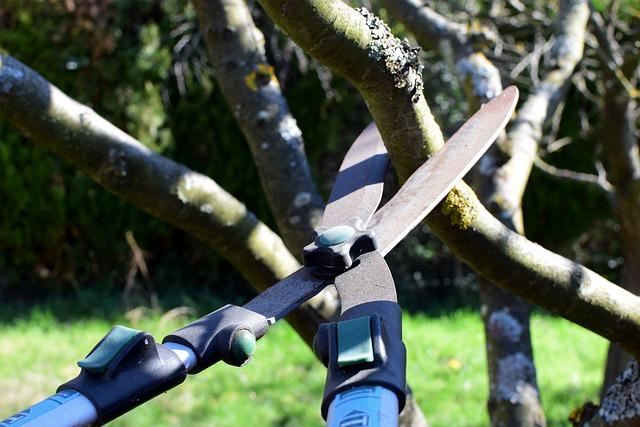 atlantic maintenance group pruning