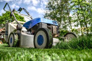 Top 3 Landscaping Maintenance Tips For Fall Atlantic Maintenance